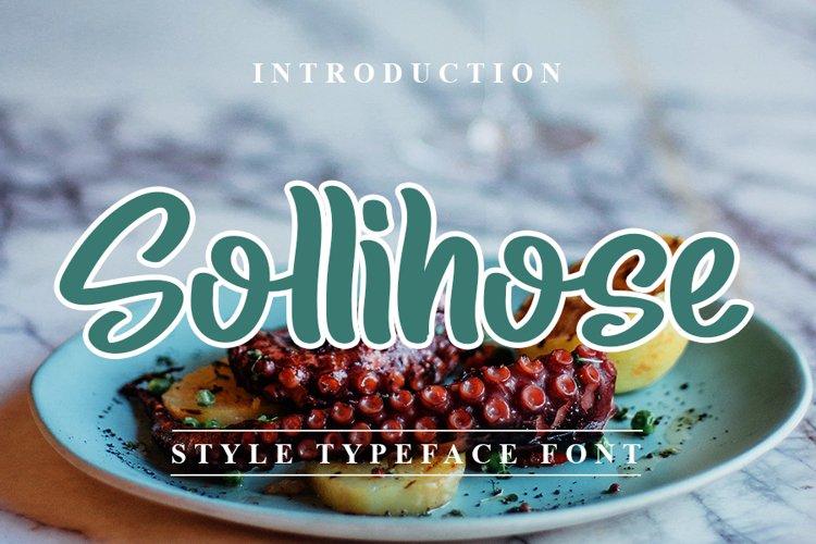 Sollihose - Style Modern Handwritten Font example image 1