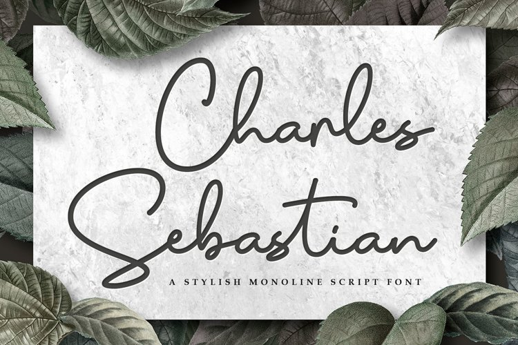 Monoline Script - Charles Sebastian Font example image 1
