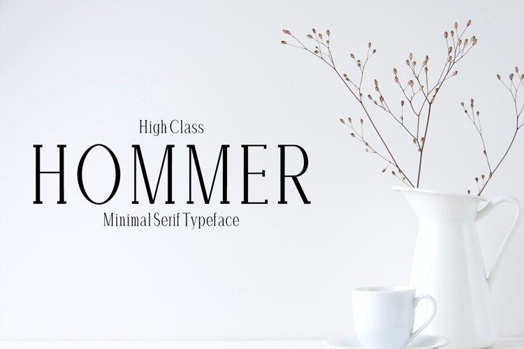 Hommer Minimal Serif Typeface example image 1