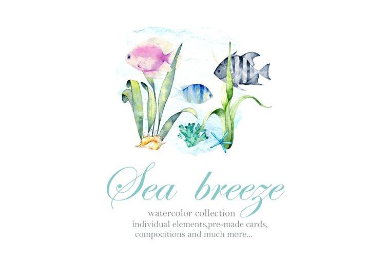 Sea breeze example image 1
