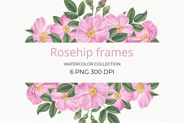 Rosehip frames example image 1