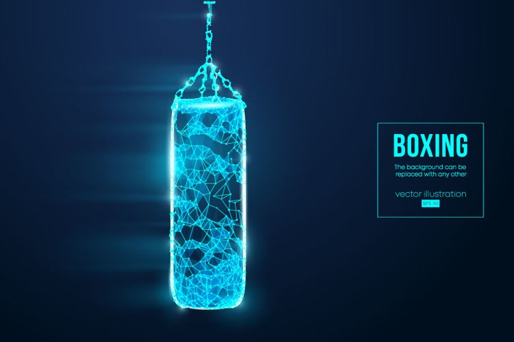Silhouettes of a boxer, punching bag, AI, EPS, PNG example image 1
