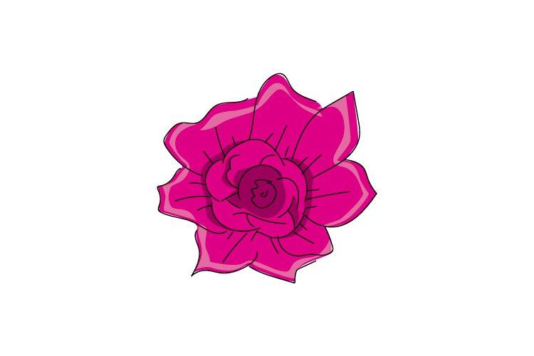 Illustration Pink Flower Design Isolated