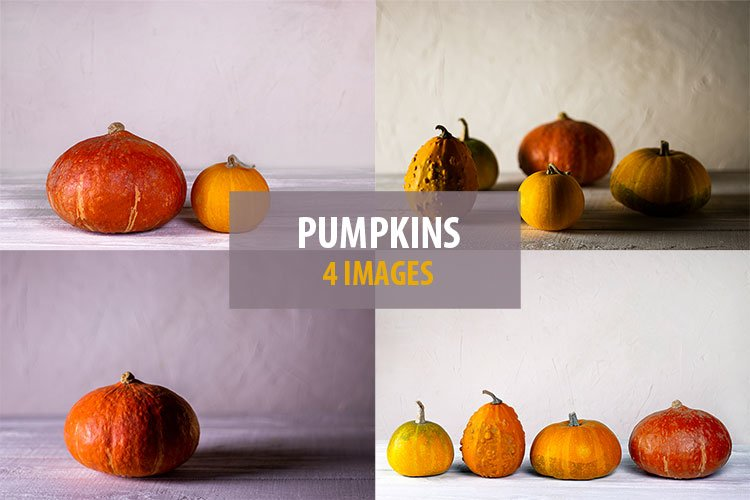 Pumpkins. Autumn harvest.