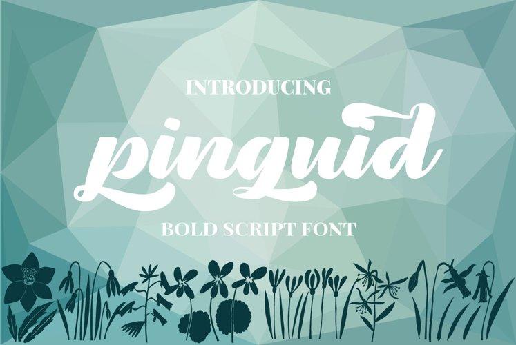 Pinguid   Bold Script