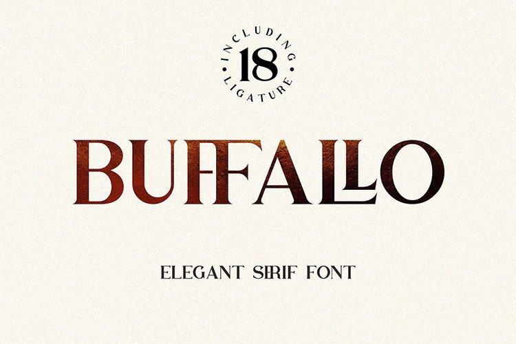 Buffallo Elegant Serif Font example image 1