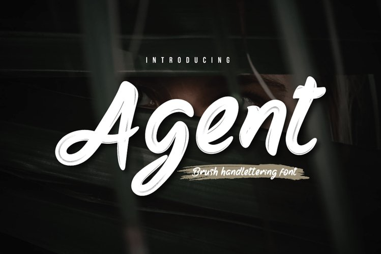 Agent example image 1