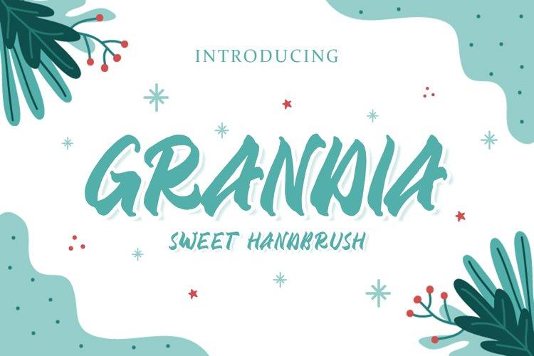 Grandia Handbrush Font example image 1