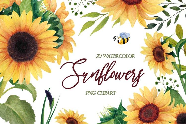 Watercolor Sunflower PNG clipart, Floral clip art