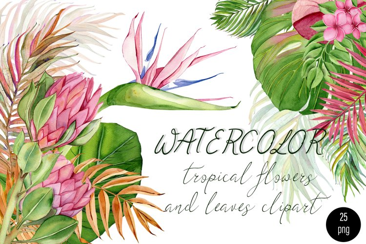 Watercolor tropical clipart, flower and leaves example image 1
