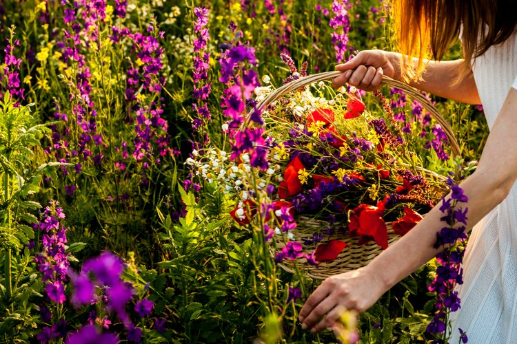 Woman picking flowers #3 example image 1