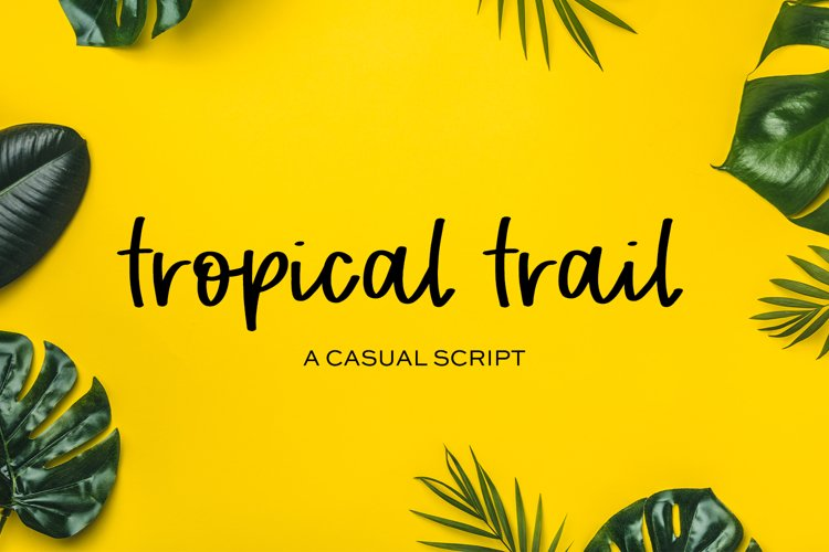 Tropical Trail Script example image 1