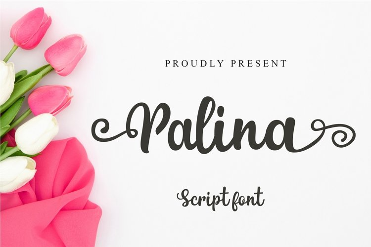 Palina Script example image 1