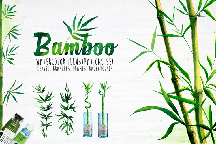 Bamboo. Watercolor illustrations. example image 1