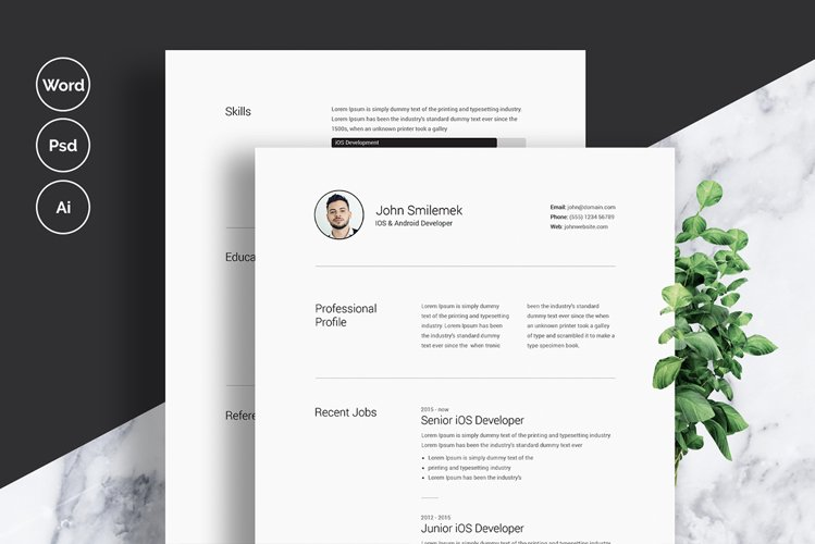 Clean Resume / CV Template with MS Word example image 1