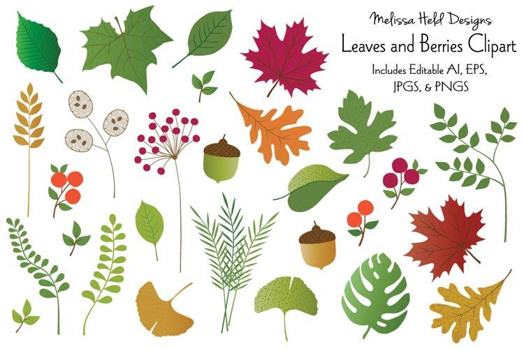 Leaves & Berries Clipart