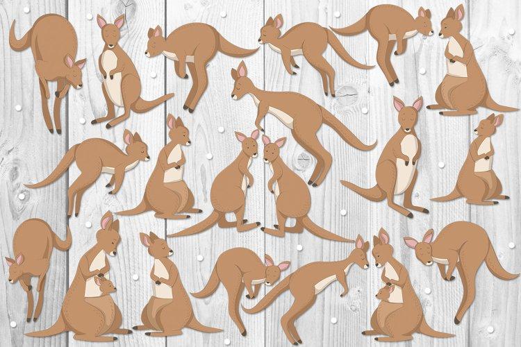 Kangaroos example 1