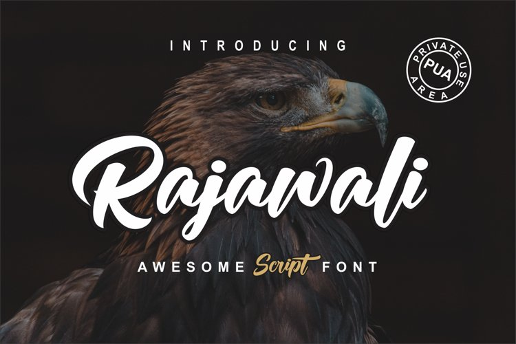 Rajawali example image 1