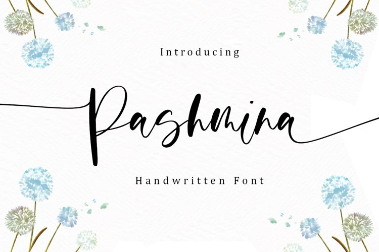 Pashmina - Handwritten Font example image 1