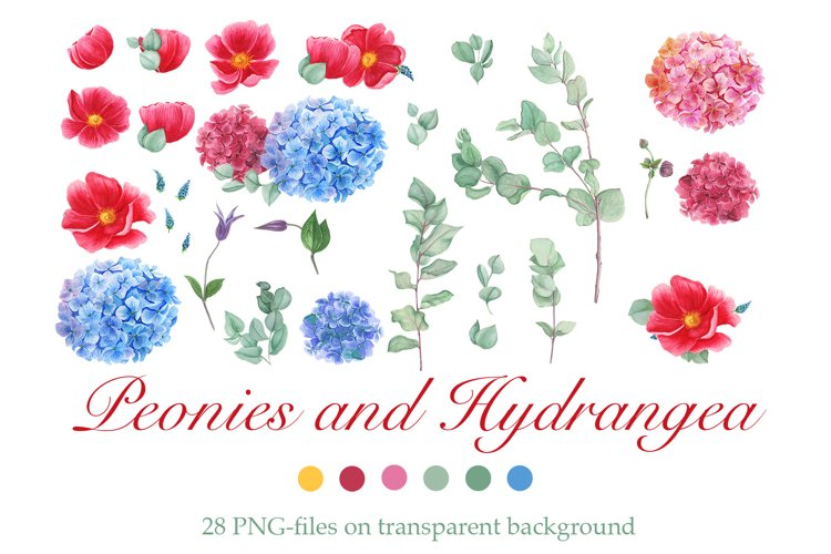 Watercolor Peonies and Blue and Pink Hydrangea example image 1