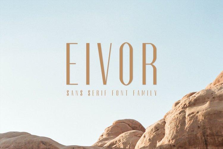 Eivor Sans Serif Font Family example image 1