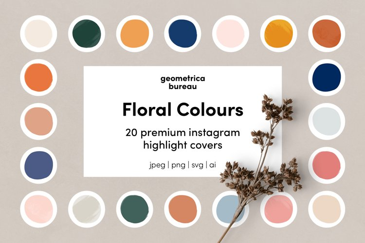 Instagram Highlight Covers Floral Colours example image 1