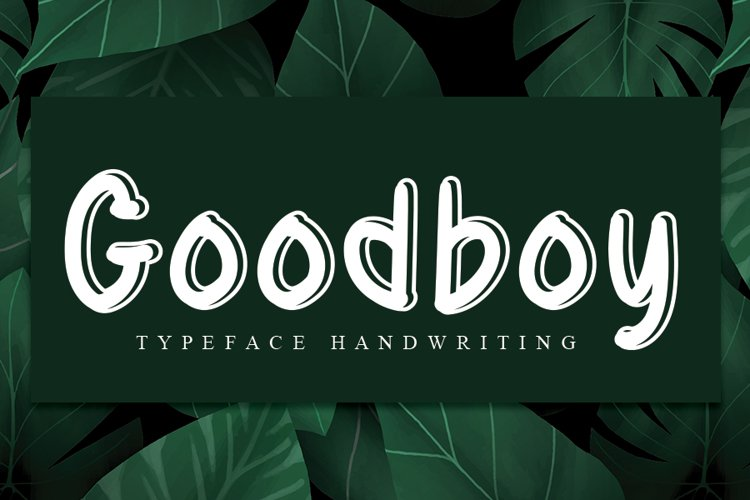 Goodboy example image 1