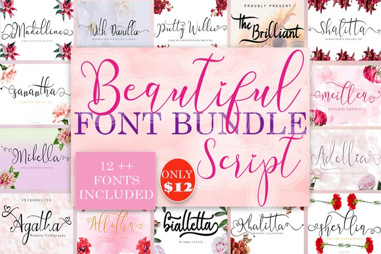 Beautiful Script Font Bundles example image 1