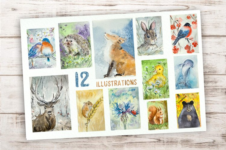 Watercolour Animal Year Bundle