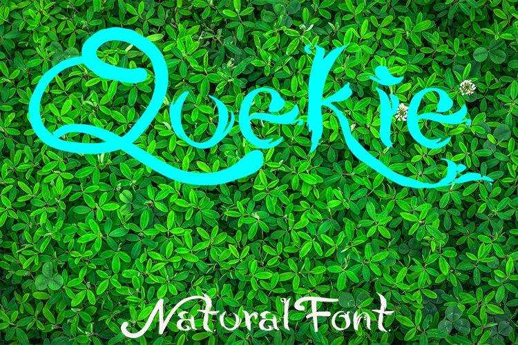 QUEKIE Natural Font example image 1