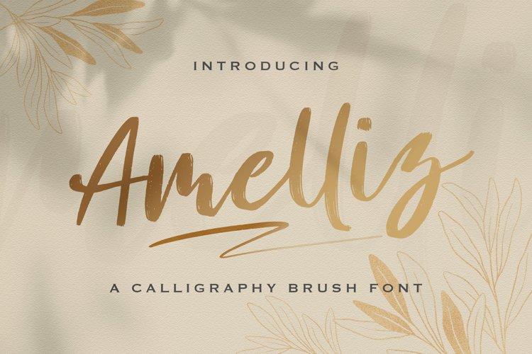 Amelliz - Calligraphy Brush Font example image 1