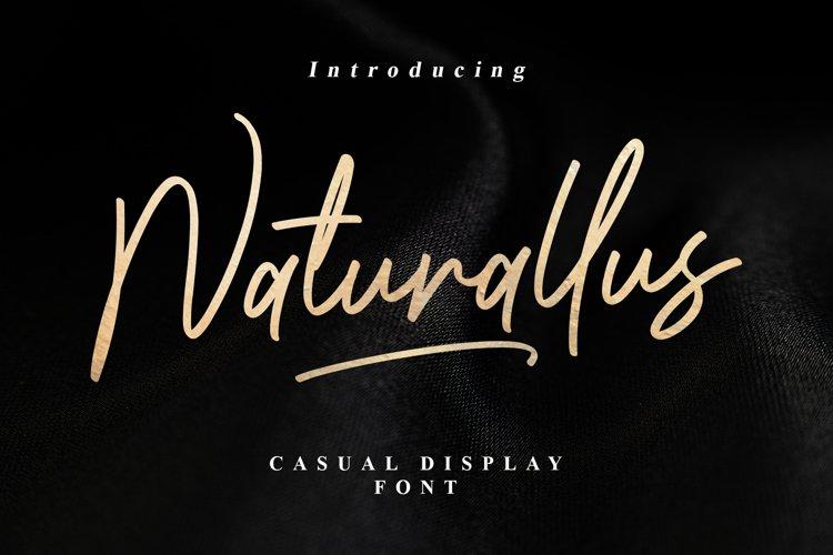 Naturallus Stylish Font example image 1