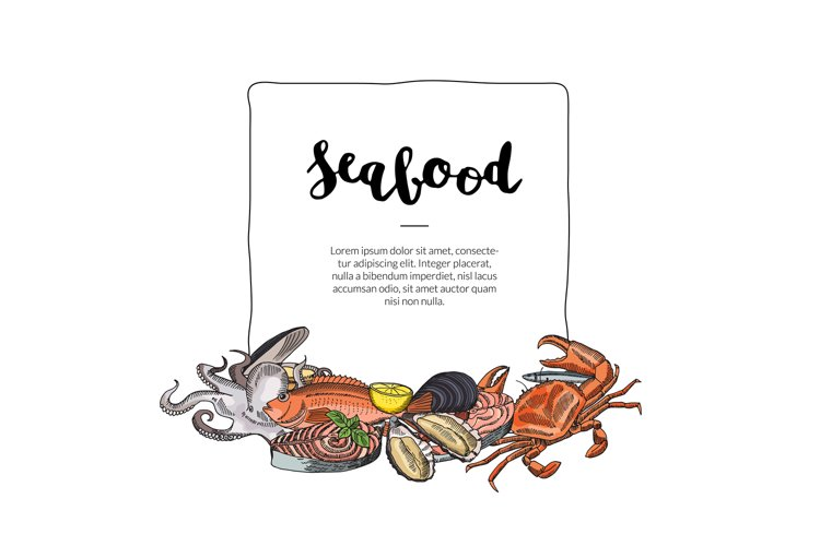 Vector hand drawn seafood elements example image 1