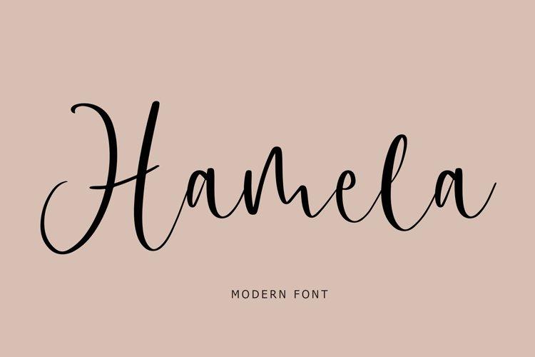 Hamela Modern Font example image 1