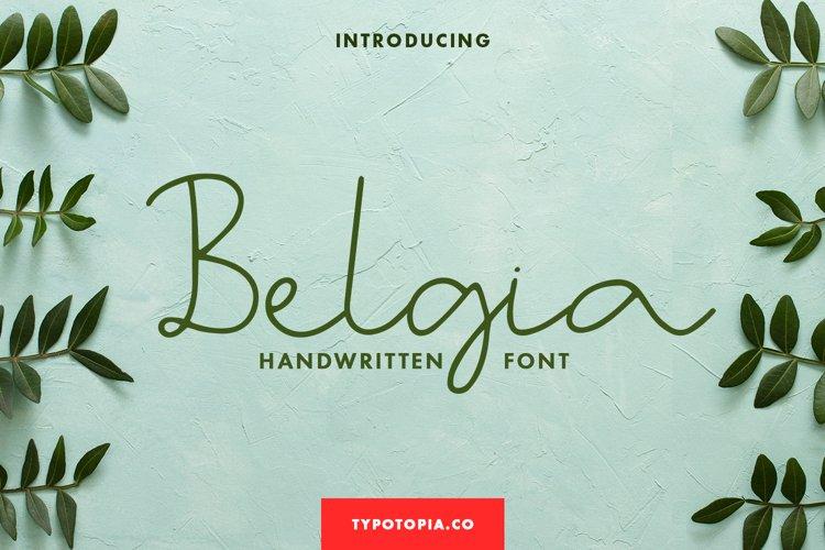 Belgia Handwritten Font example image 1