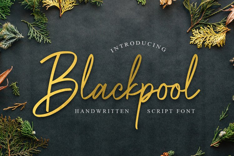 Blackpool - Handwritten Script Font example image 1