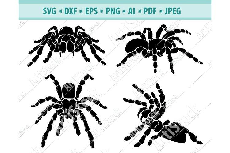 Spider SVG, Halloween SVG, Spider Clipart Svg, Dxf, Png, Eps