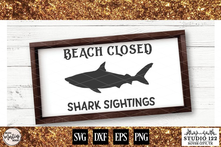 Beach Closed Shark Sightings example