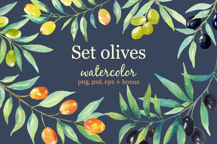 Olive set. Watercolor collection.