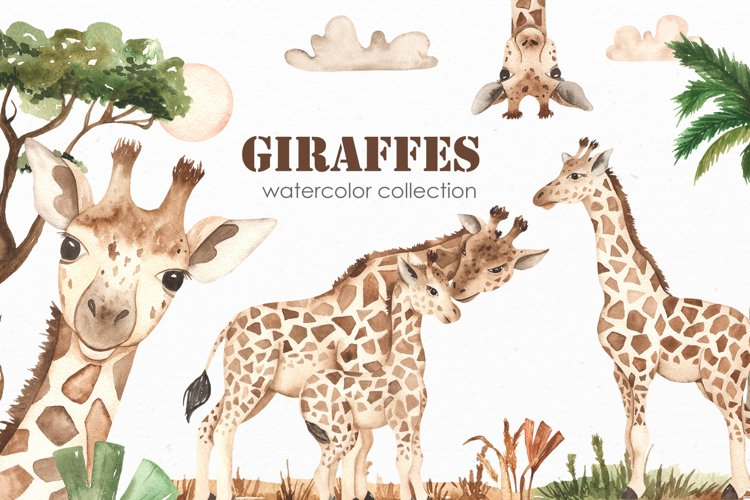 Giraffes. Watercolor collection example image 1
