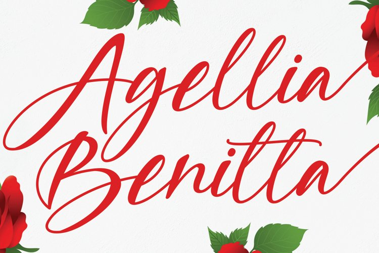 Agellia Benitta example image 1