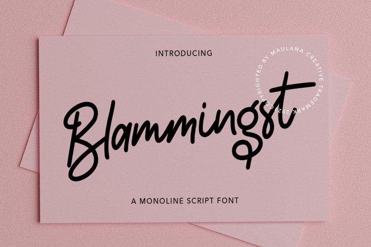 Blammingst Script Font example image 1