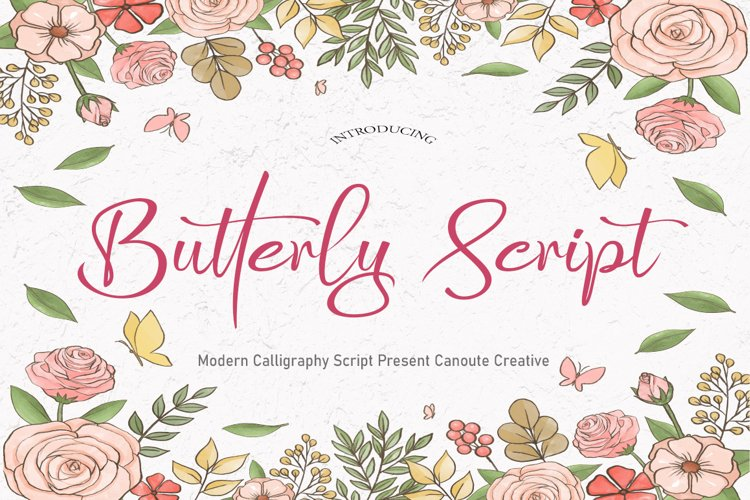 Butterly Script example image 1