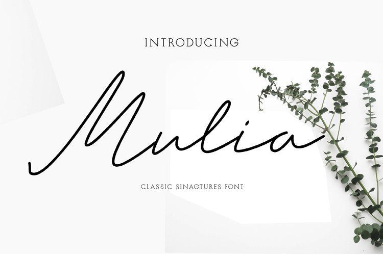 mulia example image 1