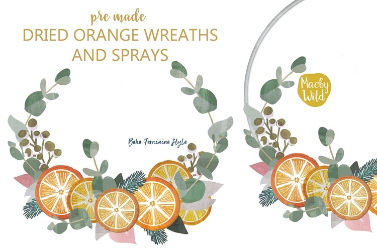 Dried Orange Slices Wreath and swag clipart with Eucalyptus