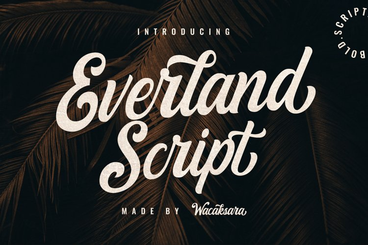 Everland Script example image 1