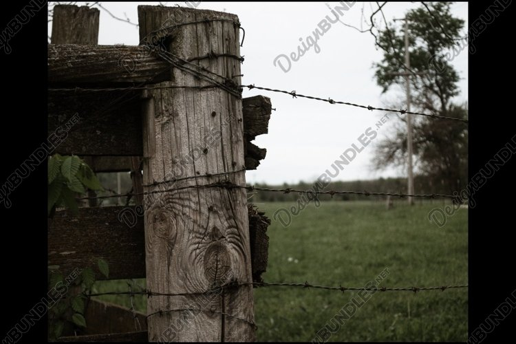 On The Fence example image 1