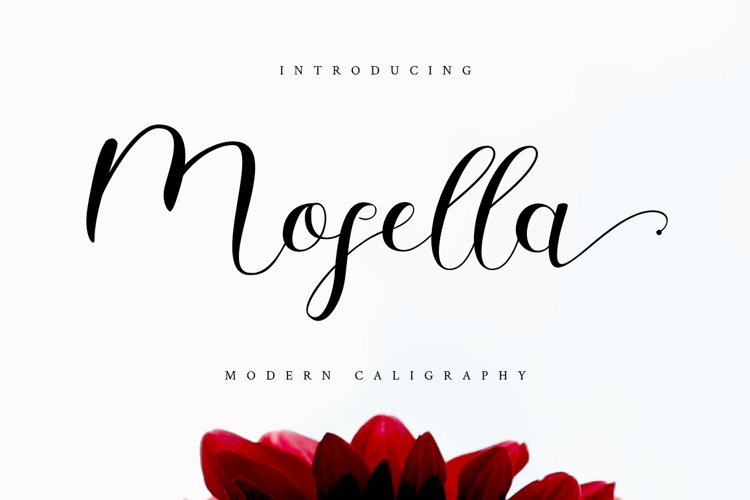 Mosella example image 1