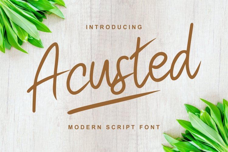 Acusted | Modern Script Font example image 1