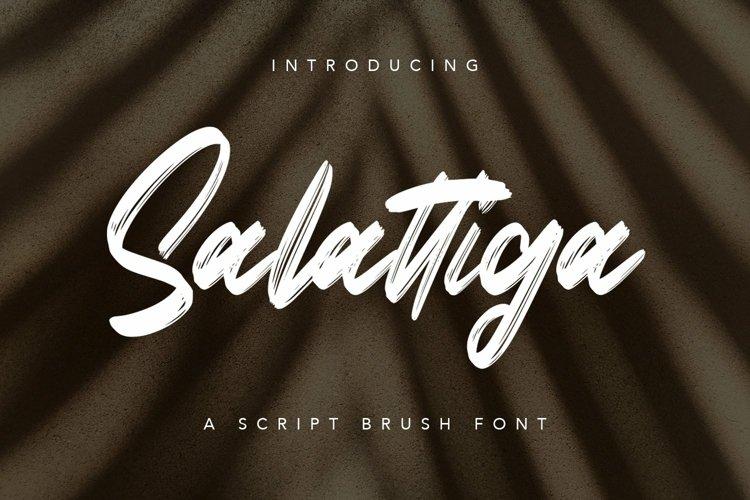 Web Font Salattiga - Script Brush Font example image 1